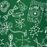 ДПА 2015 з біології