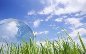 ДПА 2015 з екології в 11 класі