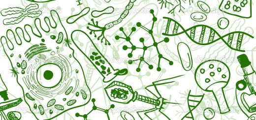 Пробне ЗНО 2017 біологія