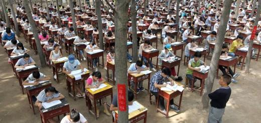 Китайські школярі екзамени здають у лісі