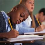 Вивчення мови та літератури національних менших у 7 класі