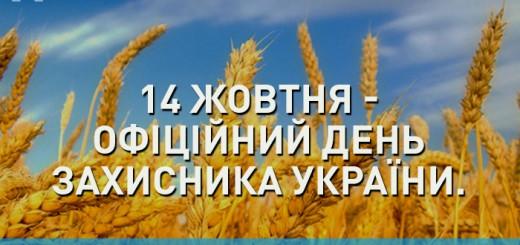 Скачати виховну годину до Дня захисника України