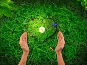 Екологія людської душі