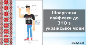 Шпаргалка лайфхаки до ЗНО з української мови
